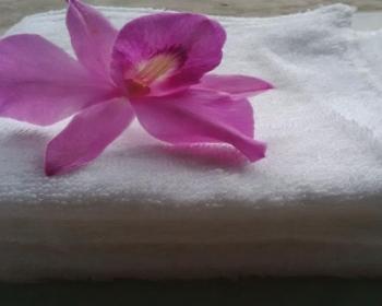 khăn lau chùi
